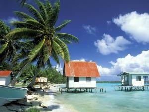 Postal: Playa en la Polinesia Francesa