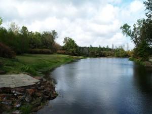 Lago en el parque
