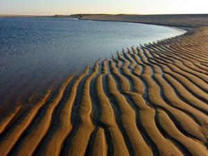 Postal: Surcos en la arena