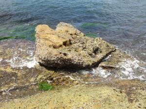Postal: Roca en la orilla