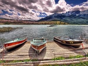 Barcas encadenadas