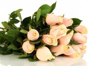 Postal: Ramo con pimpollos de rosas