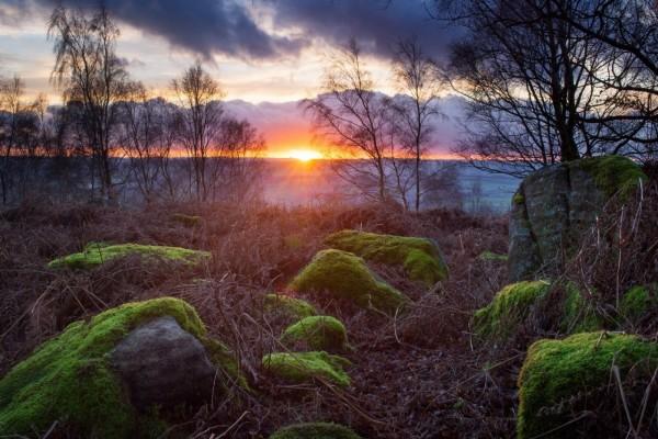El ocaso del sol visto desde las rocas con musgo
