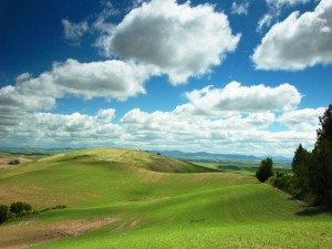 Postal: Cielo con nubes sobre el prado