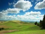 Cielo con nubes sobre el prado