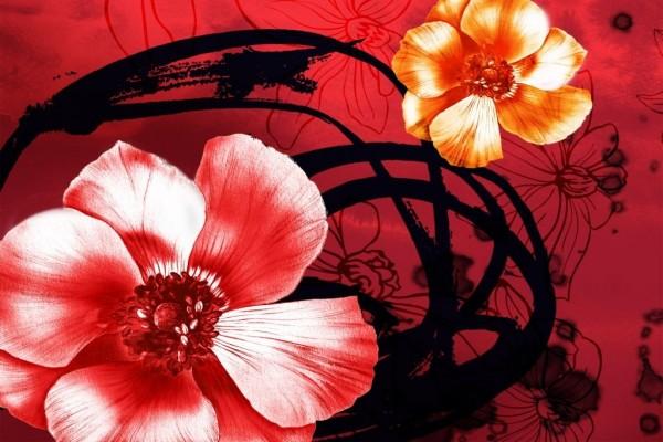 Una flor con pétalos naranjas y otra con pétalos rojos