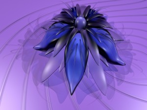 Postal: Flor con pétalos de varios colores