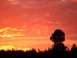Postal: Nubes amarillas y naranjas