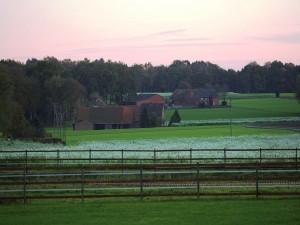 Casas en una amplia zona verde