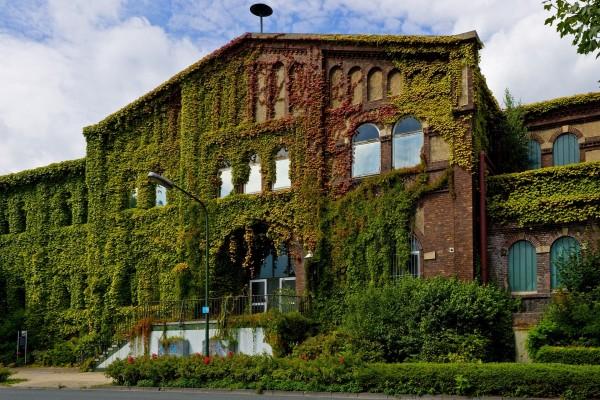 Edificio cubierto de plantas