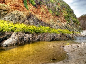 Musgo verde en las rocas