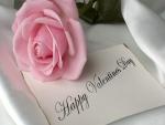 Una rosa de color rosa y un mensaje