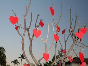 Postal: Corazones en el árbol