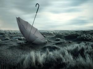 Postal: Un paraguas olvidado