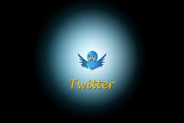 El pajarito de Twitter guiñando un ojo