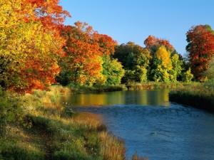 Postal: Río con bonitos árboles otoñales