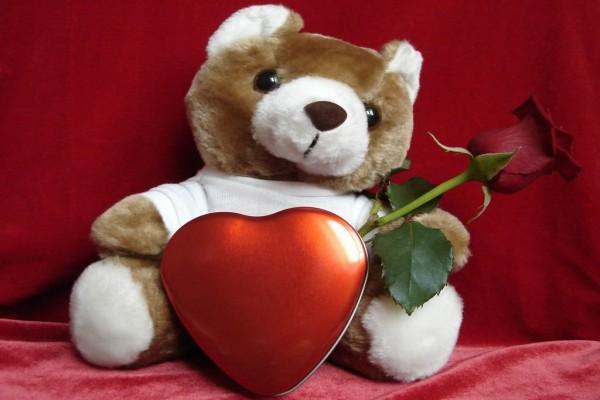 Osito de peluche con rosa roja para el día de los enamorados