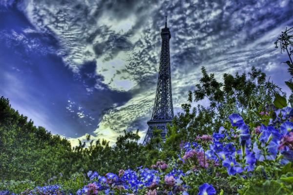 Flores y la Torre Eiffel