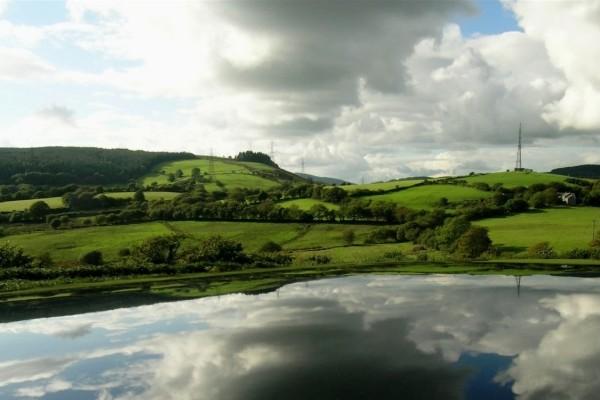 Lago en una zona verde