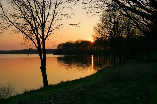 Tarde en el lago