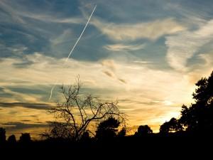 Postal: Cielo azul al atardecer