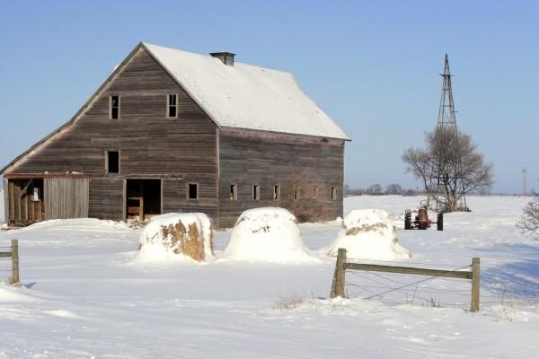 Nieve en la granja