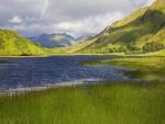 Color verde alrededor del lago