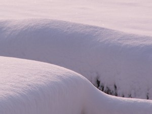 Postal: Gruesa capa de nieve