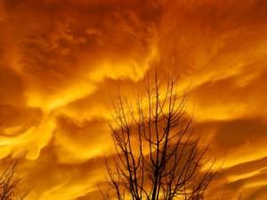 Postal: Nubes en un cielo naranja