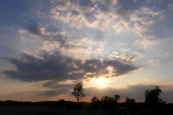 El brillante sol de la tarde