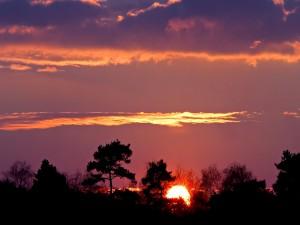 El sol al comenzar el día