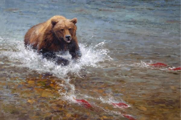 Oso en el río