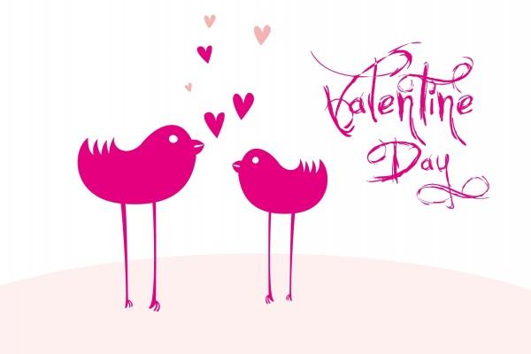 Pájaros en San Valentín