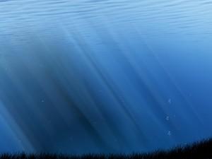 Postal: Burbujas en el agua