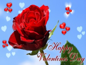 """Tarjeta con una rosa """"Feliz Día de San Valentín"""""""