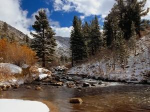 Postal: Nieve en las orillas del río