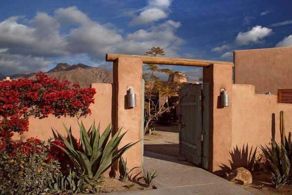 Cactus y flores en la puerta de entrada