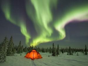 Aurora boreal en un lugar nevado