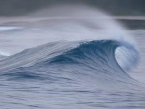 La ola en el mar
