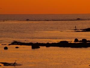 Pesca en el mar al atardecer