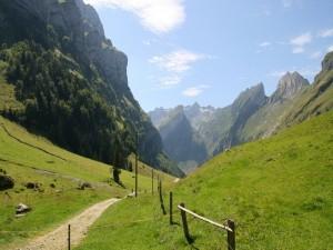 Sendero en las montañas verdes