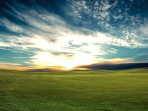 Postal: Amanecer en la gran llanura verde