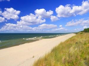 Postal: Extensa playa