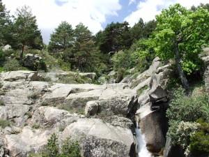 Cerca del nacimiento del río Manzanares (La Pedriza, Madrid)