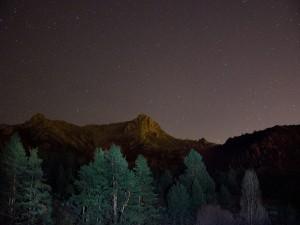 Noche de estrellas en el bosque