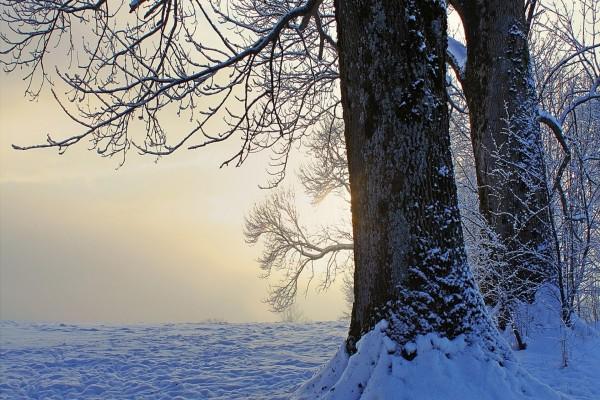Puesta de sol en invierno