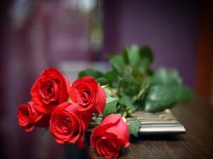 Postal: Rosas rojas sobre la mesa