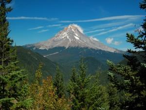 Postal: Mirando hacía la montaña