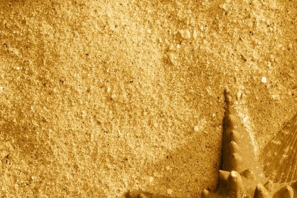 Estrella en la arena