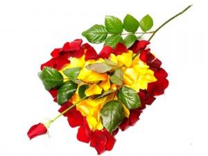 Postal: Corazón de pétalos de rosa rojos y amarillos
